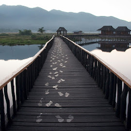 Footsteps in the dew by Elaine Springford - Buildings & Architecture Bridges & Suspended Structures ( myanmar, dew, reflections, lake, bridge, footsteps, mist )
