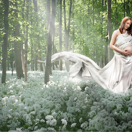 Forest Mom by Paul Haines - People Maternity