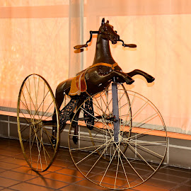 IMG_4695.JPG - Version 3 by Joe Rahal - Transportation Bicycles