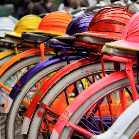 Colorful! by Steven Silman - Transportation Bicycles