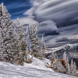 by Tracey Dolan - Landscapes Mountains & Hills