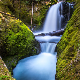 Unnamed Waterfall by Mats Nordgren - Landscapes Waterscapes ( water, unnamed waterfall, green, creek, waterfall, moss )