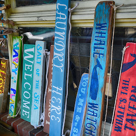 Fun Signage  by Lorraine D.  Heaney - Artistic Objects Signs