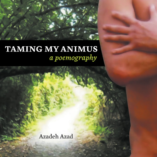 Taming My Animus cover