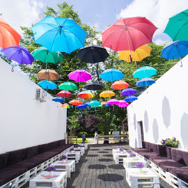 umbrella cover by Adam Lang - Artistic Objects Other Objects ( cover, chairs, ceiling, art, umbrella )