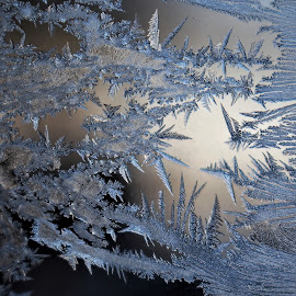 Crystal Art by RichandCheryl Shaffer - Nature Up Close Other Natural Objects ( #winter, # frozen, #crystals )