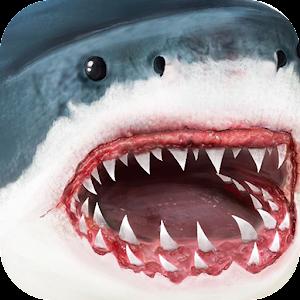 Cover art Ultimate Shark Simulator