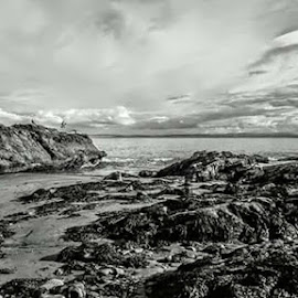 Dysart in Black and White  by Heather McKinney - Black & White Landscapes ( black and white, beach, landscape )