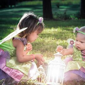 MyFairies by Chris Thomas - Babies & Children Child Portraits ( child, lantern, fairyshoot, fairy, dodge, kids, burn, portrait, photoshop )