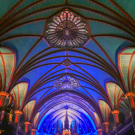 Ceiling Detail by Sue Matsunaga - Buildings & Architecture Places of Worship
