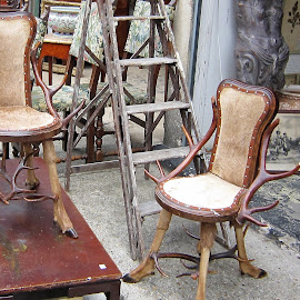 Antlers Antique Chairs by Dennis Ng - Artistic Objects Antiques