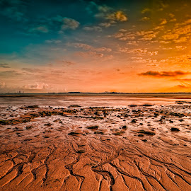 Martian Landscape by Gordon Koh - Landscapes Beaches