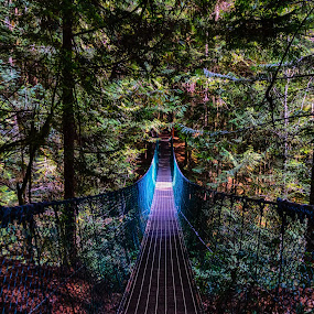 Glow Suspension Bridge in Juan de Fuca Park, Vancouver Island, British Columbia by Carrie Cole - Buildings & Architecture Bridges & Suspended Structures ( nature, vancouver island, trail, suspension, mystic beach, bridge, juan de fuca, hiking )