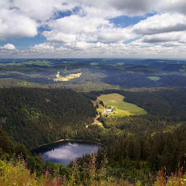 Schwarzwald by Alik Zlotnik - Landscapes Travel ( germany, schwarzwald, relax, tranquil, relaxing, tranquility,  )