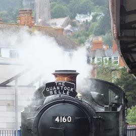 Steam in Minehead by Marjorie Powls - Transportation Trains