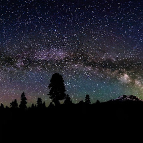 Shasta Milky Way by Andrew Gilbert - Landscapes Starscapes ( milkyway, mtshasta, mountain, stars, trees, night )