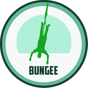 Cover art Bungee Jump Virtual Reality