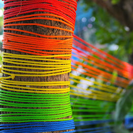 Nylon Ropes by Koh Chip Whye - Artistic Objects Other Objects