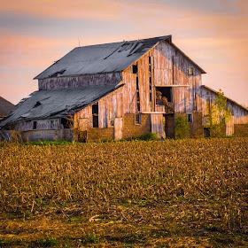 Old Hoosier Barn 03.jpg