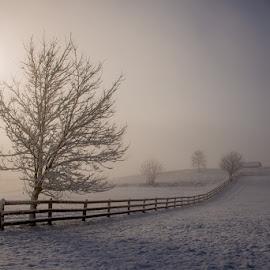 Winter fairytale by Joško Šimic - Landscapes Prairies, Meadows & Fields (  )