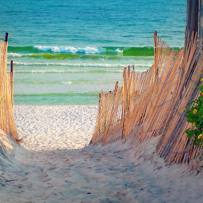 Seaside by Katie McKinney - Landscapes Beaches ( water, sand, fence, gulf coast, turquoise, florida, path, sea, walkway, ocean, seaside, beach )