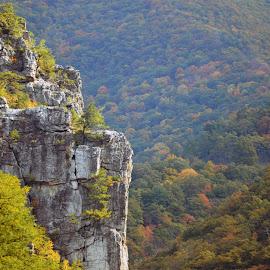 by Jan Blackburn - Landscapes Mountains & Hills