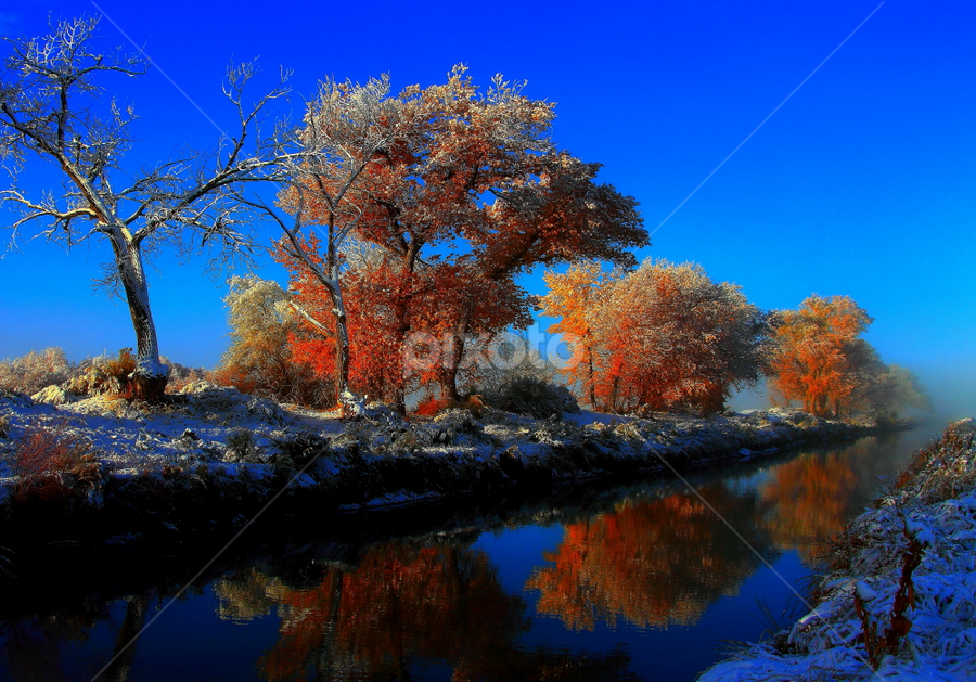 Blue Bayou by Dennis Ducilla - Landscapes Waterscapes ( water, orange, winter, blue, snow, trees, reflections, ducilla, canal )