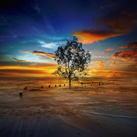 by MrDaniel Chng - Landscapes Waterscapes
