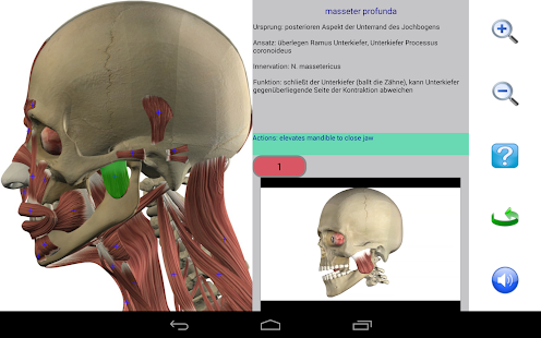 Visual Anatomy Screenshot