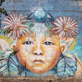 San Ramon Wall Art by Norma Brandsberg - Artistic Objects Signs ( wall art, face, san ramon, graffiti, costa rica, cinder block, downtown,  )