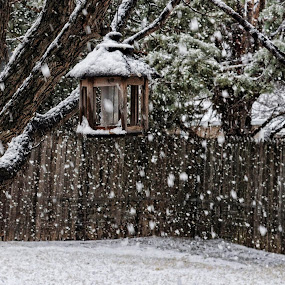 West Texas Snow Fall by Starla Sims - Artistic Objects Other Objects ( bird feeder, snow )