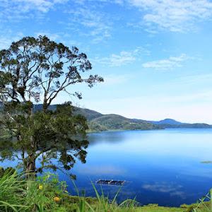 danau diateh.jpg
