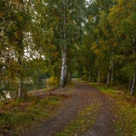 by Bojan Bilas - City,  Street & Park  City Parks ( nature, autumn, fall, suomi, finland, long exposure, forest, landscape, rauma )