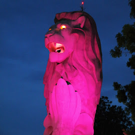 Merlion by Koh Chip Whye - City,  Street & Park  City Parks