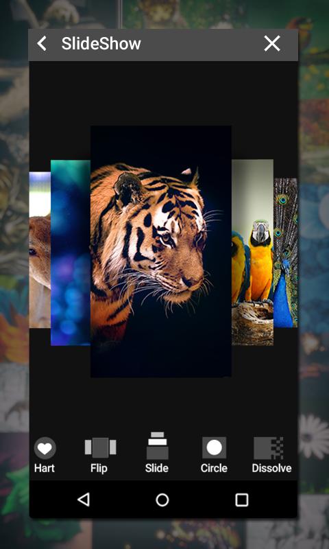 Gallery Screenshot 5
