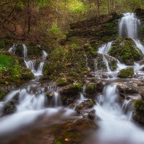 Ozark warerfall by Andy Snider - Landscapes Waterscapes ( waterscape, midwest, waterfall, forest, ozarks, landscape )