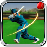 Cricket t20 2016 APK Image