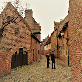 Leuven, Belgium by Luis Felipe Moreno Vázquez - Instagram & Mobile Android ( leuven, buildings, historic district, belgium )