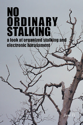 No Ordinary Stalking  cover