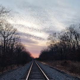 Sunset by Lisa Vitale - Transportation Trains (  )