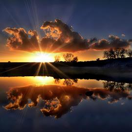 Sunset Reflection by Brian Blood - Landscapes Sunsets & Sunrises ( reflection, folsom lake, sunset, lake, folsom )