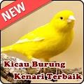 Download Kicau Burung Kenari Terbaru APK
