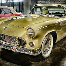 Gold by Ray Ebersole - Transportation Automobiles ( car, tulsa, interior, color image, ok, tulsa auto show 100, car show, yellow, morning, colour image )