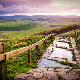 View from Mam Tor, Derbyshire by Molly Hollman - Landscapes Prairies, Meadows & Fields ( mam tor path view peak district derbyshire england )