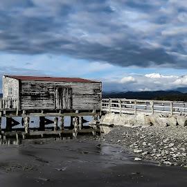 Okarito Lagoon by Perla Tortosa - Landscapes Travel ( clouds, lagoon, nature, jetty, fishing, destination )