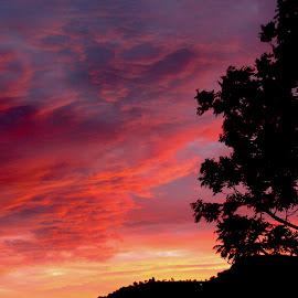 November Sunset by Christo W. Meyer - Novices Only Landscapes ( sunset )
