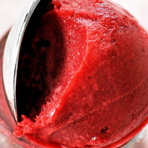 Red Rose Raspberry Sorbet