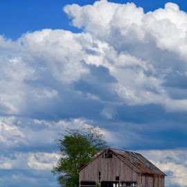 by Lorna Littrell - Landscapes Cloud Formations (  )