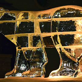 Beary Cold by Rob Bradshaw - Artistic Objects Other Objects ( beaver creek ski resort, ice sculpture, skating rink, colorado, beary cold, artistic objects )
