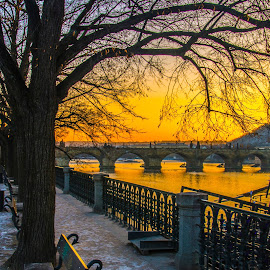 Vitava River Prague by Dave Williams - Landscapes Sunsets & Sunrises ( railings, bench, sunset, snow, czech republic, vitava river, trees, landscape, prague, charles bridge, dave williams )